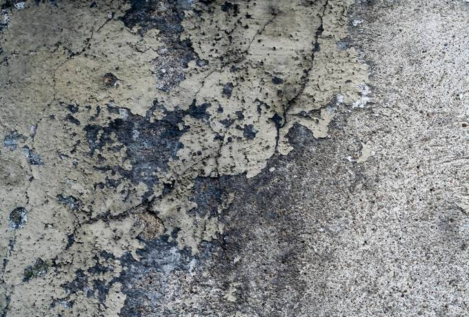 free grunge wall plaster texture