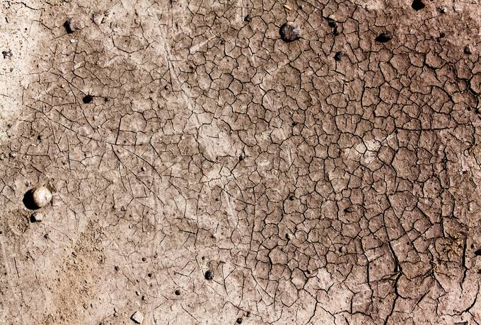 dries cracked soil