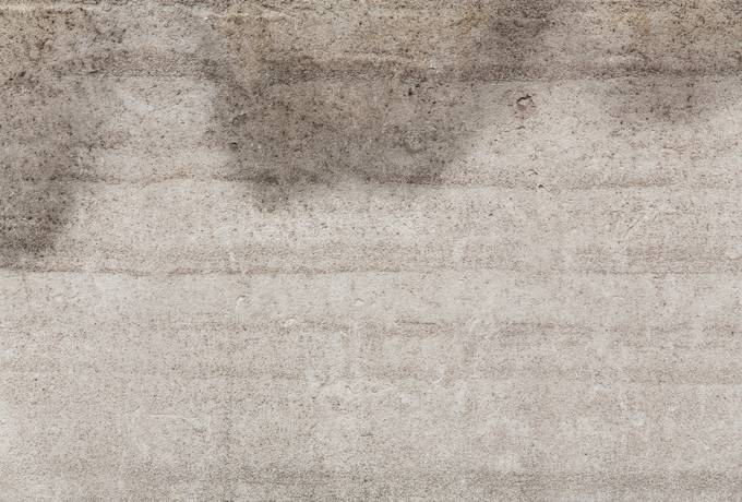 free cement rough parget texture