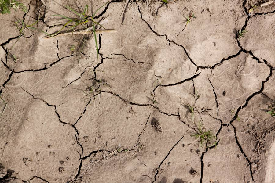 cracked ground soil free texture