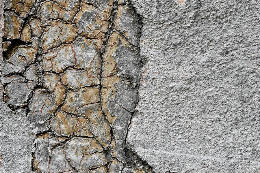 cracked plaster wall free texture