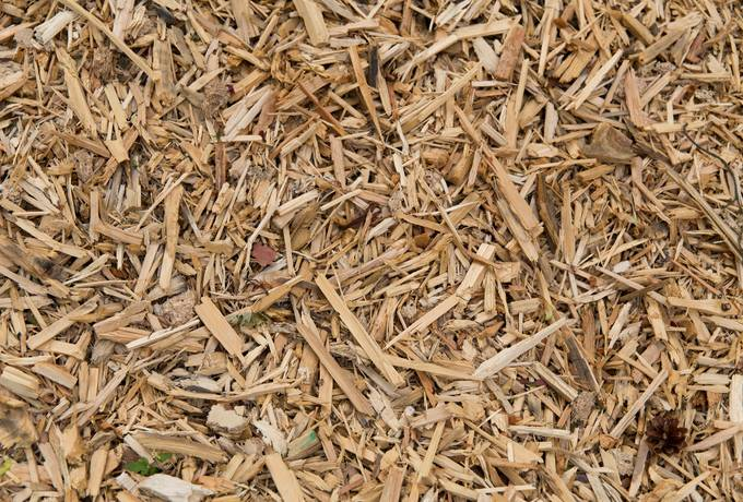 scobs wood chips sawdust