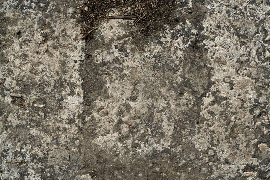 concrete dust ground free texture