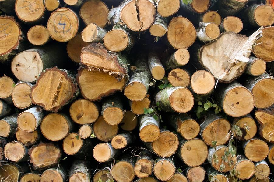 log woodpile wood free texture