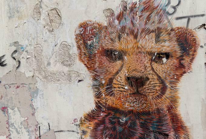 Grunge Wall with Animal