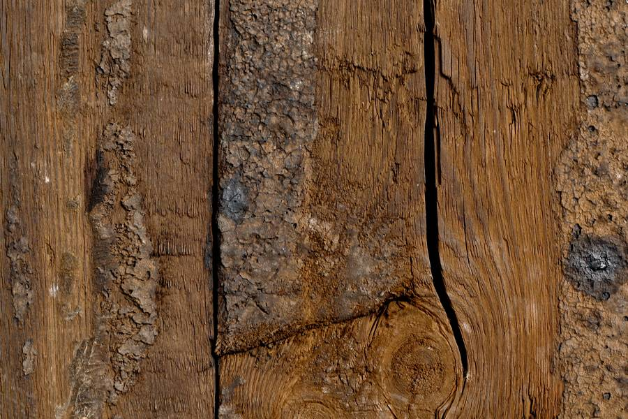 knot wood grunge free texture