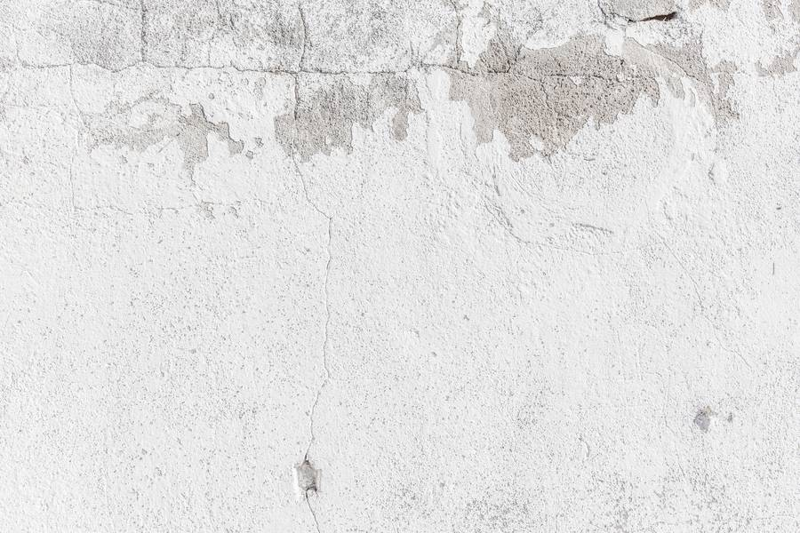 White Cement Wall free texture