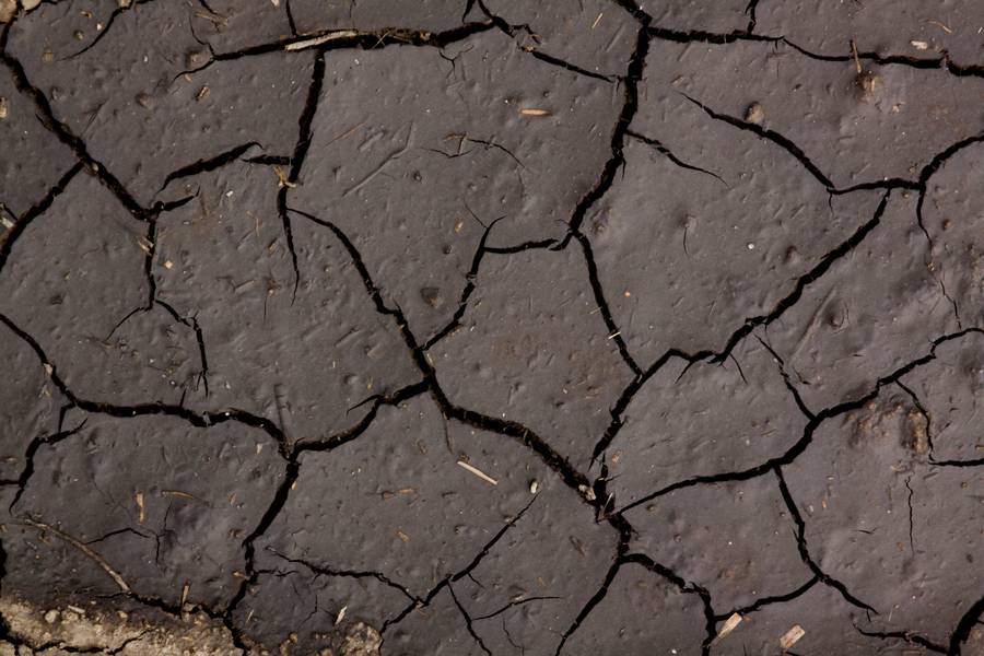 mud soil cracked free texture