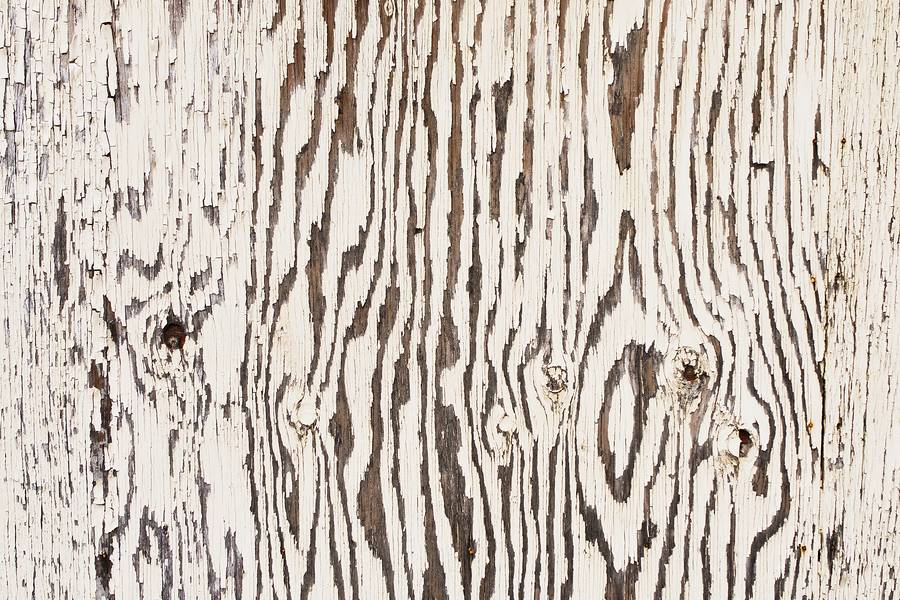 White Painted Wood Plank free texture