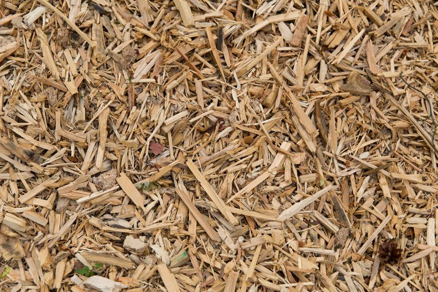scobs wood chips sawdust free texture