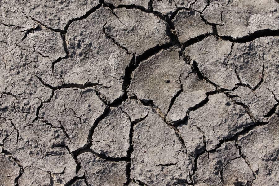 cracked ground dry free texture