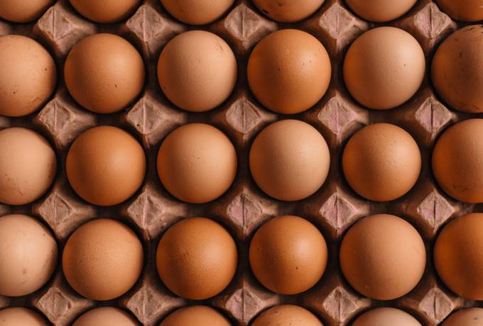free Pack of Brown Eggs texture