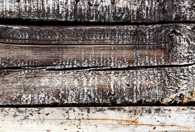 free plank wood dirty texture