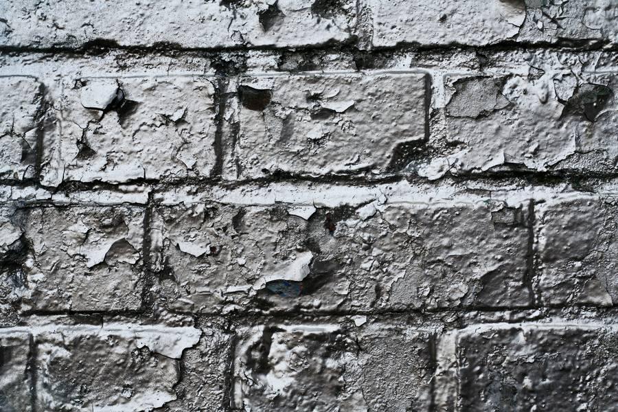 Wall Metallic Paint Free Texture
