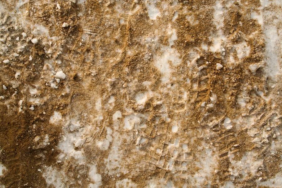 snow sand print free texture