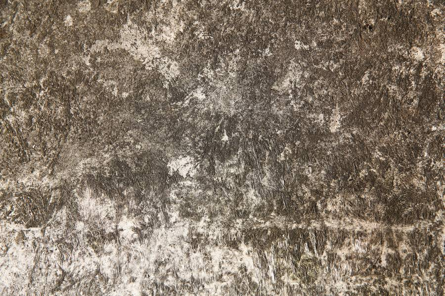 roughcast dirty parget free texture