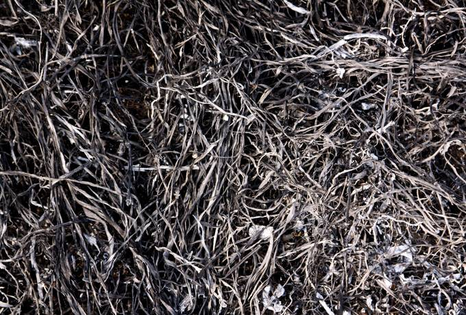free ash ground burnt texture