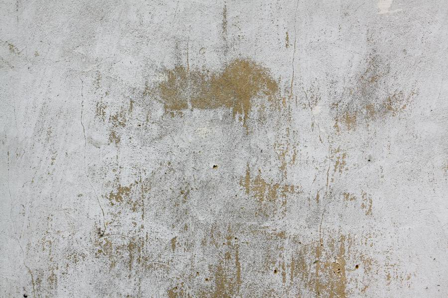 Water Stain On Wall Paint