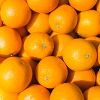 Fresh Oranges Background