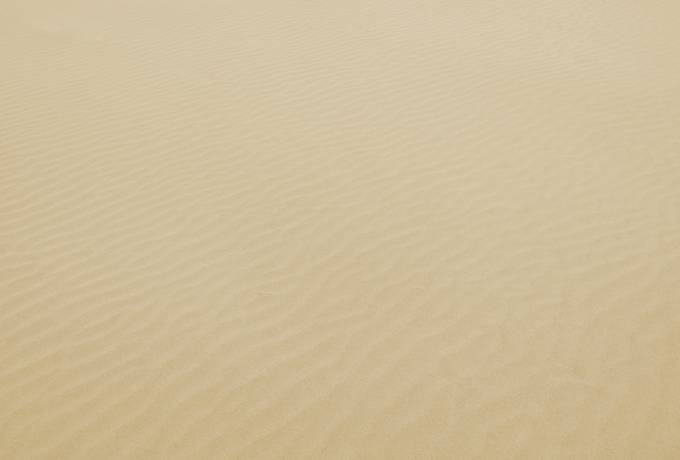 free Rippled Sand Surface texture