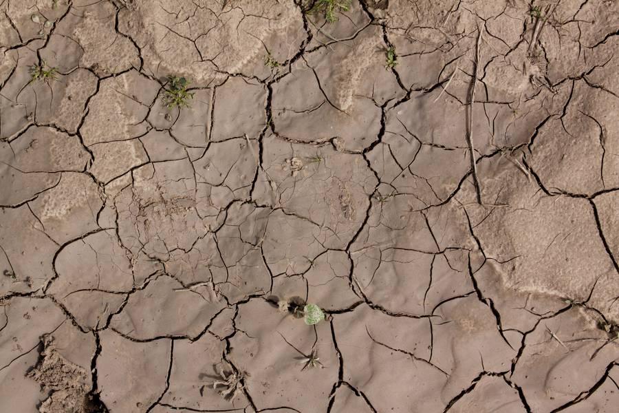 ground cracked soil free texture