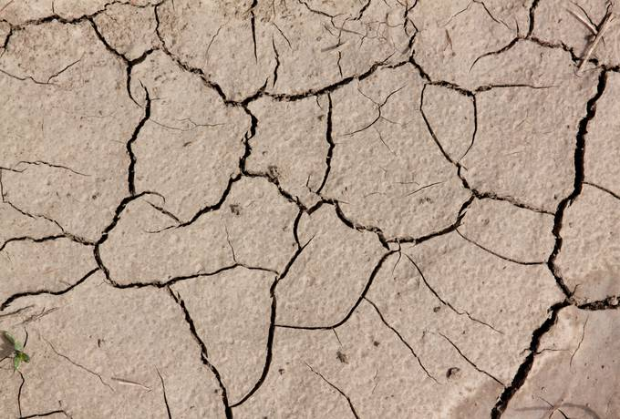 dry soil cracked