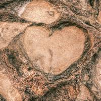 Heart Shape in the Rock Formation