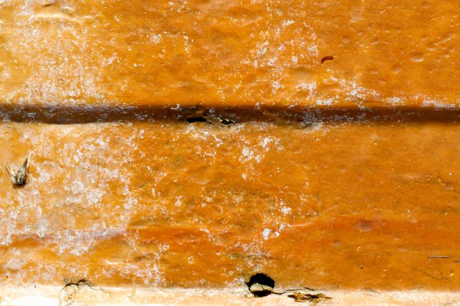 paint damaged plastic free texture