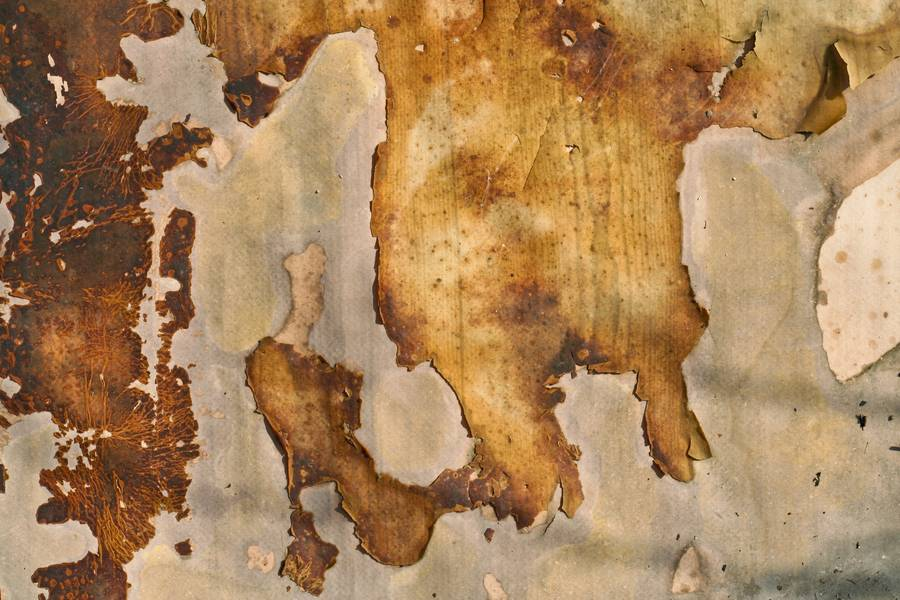 stained old grunge free texture