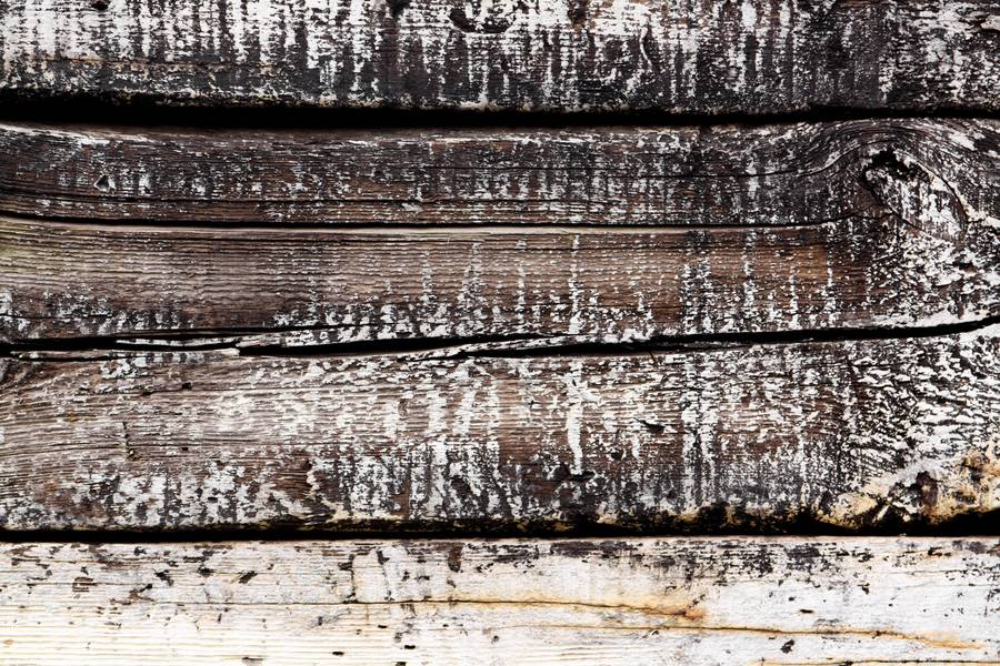 plank wood dirty free texture
