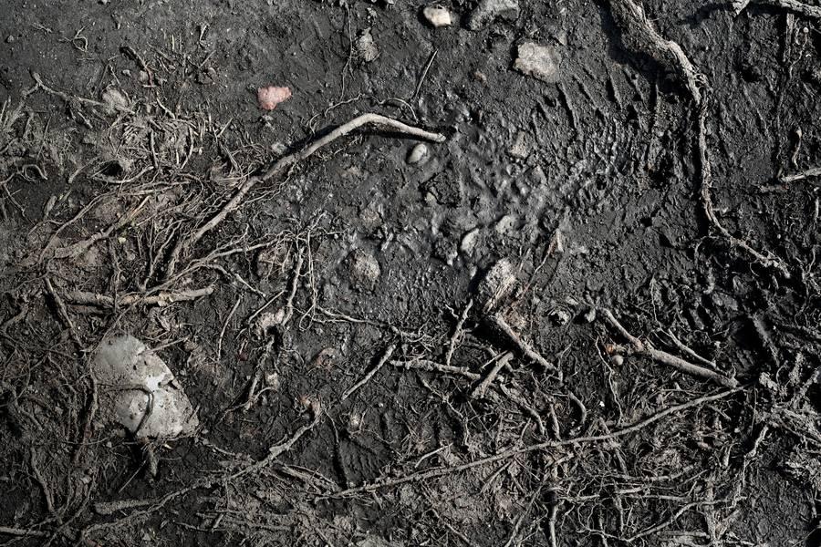 dirt ground mud free texture