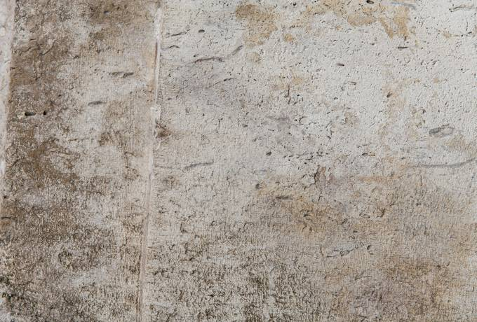 free rough cement wall texture