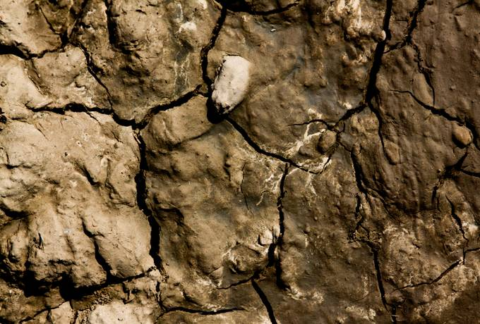 free closeup cracked mud texture