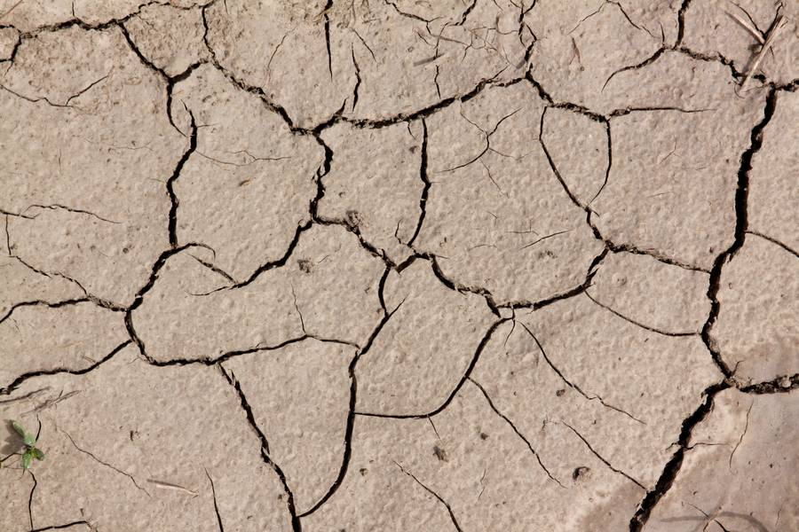 dry soil cracked free texture