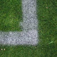 White Stripe on the Green Soccer Field