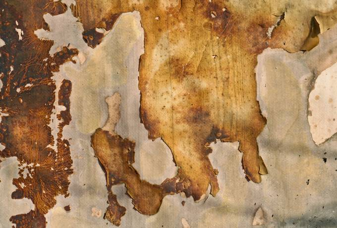 free stained old grunge texture