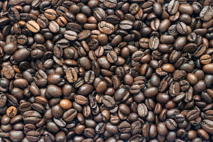 Coffee Beans Closeup free texture