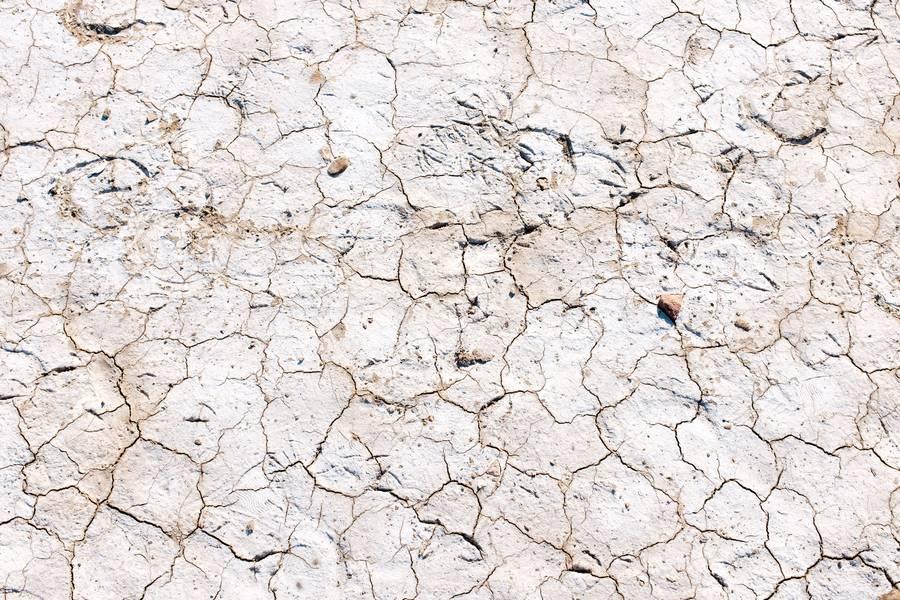 Arid Ground free texture