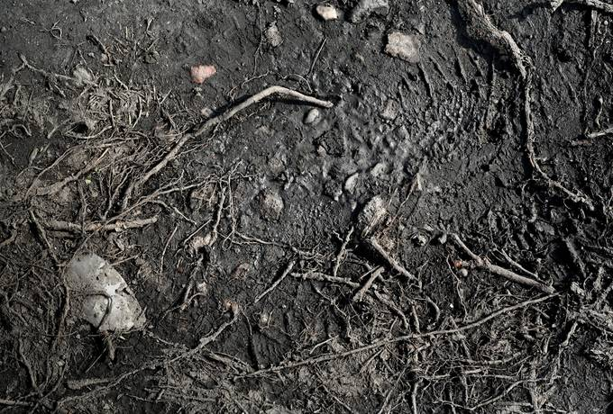 free dirt ground mud texture