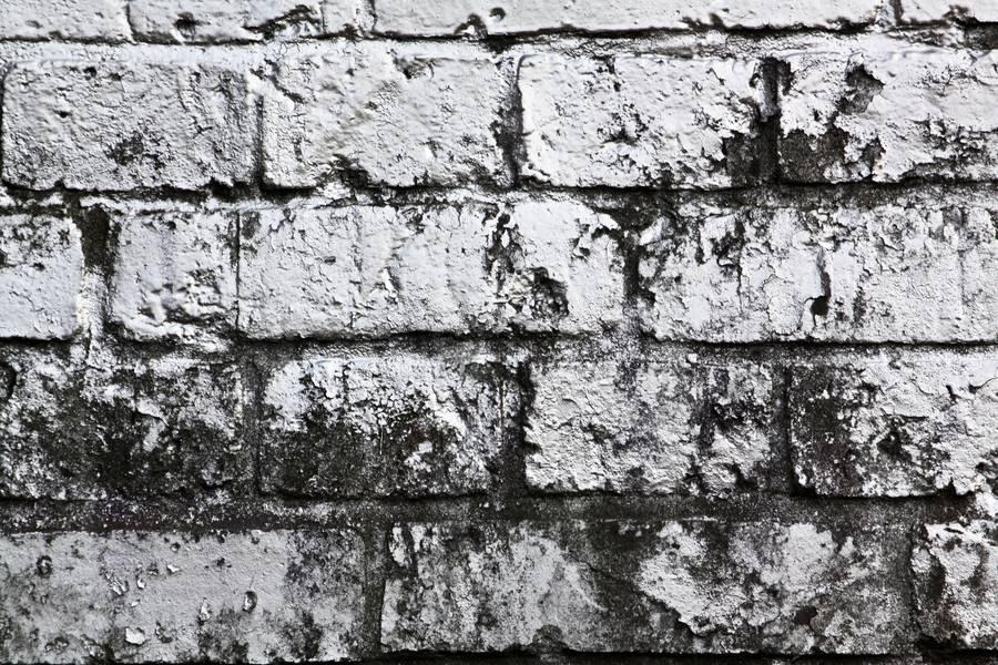 wall brick paint free texture