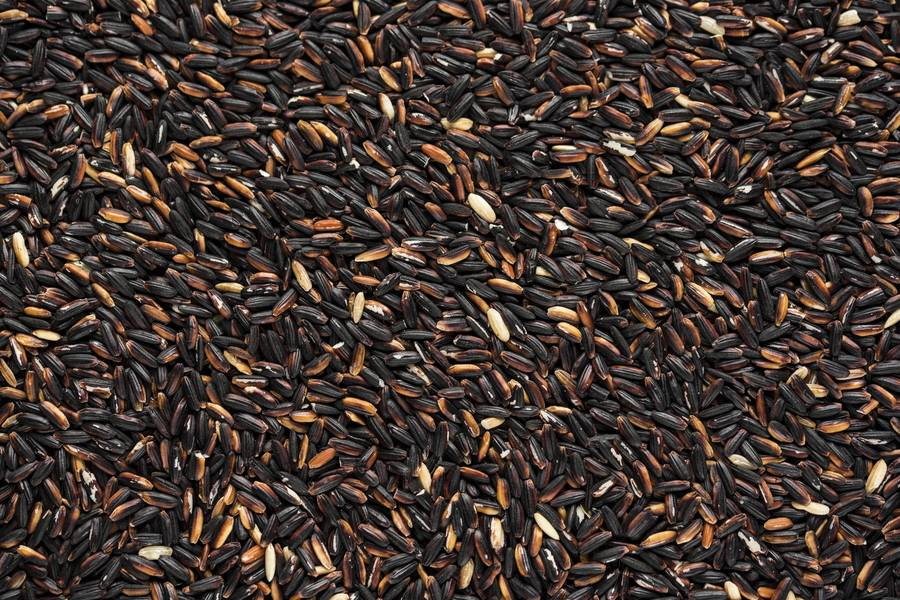 Raw Black Rice free texture