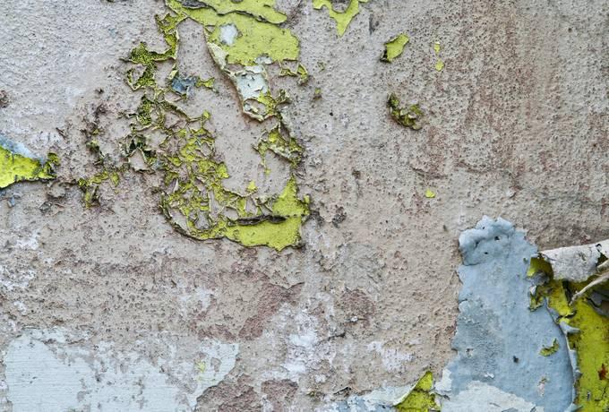 peeling wall plaster