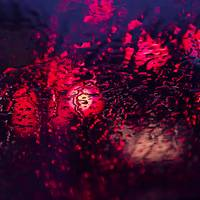 Abstract Bokeh Wet Surface