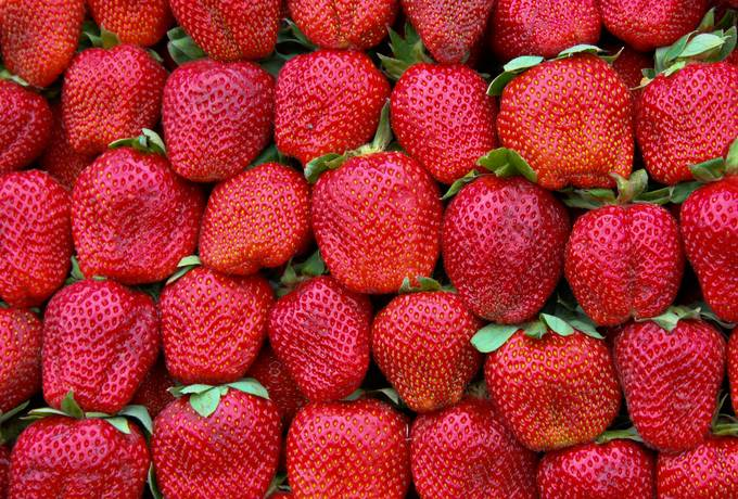 strawberries fruits nature