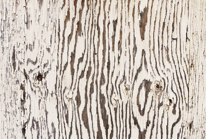 free White Painted Wood Plank texture