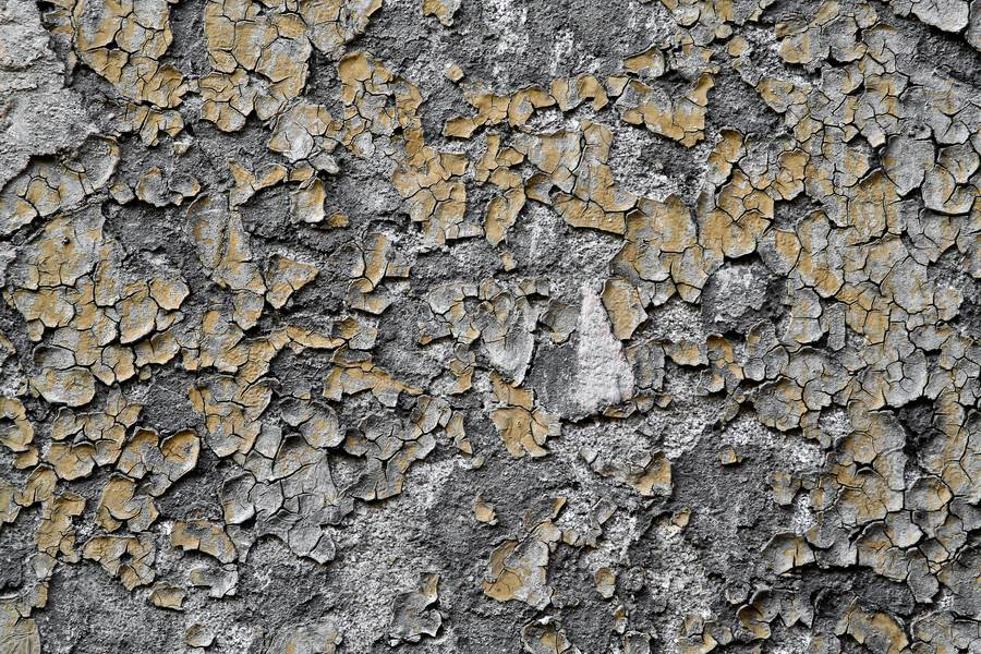 cracked peeling roughcast free texture
