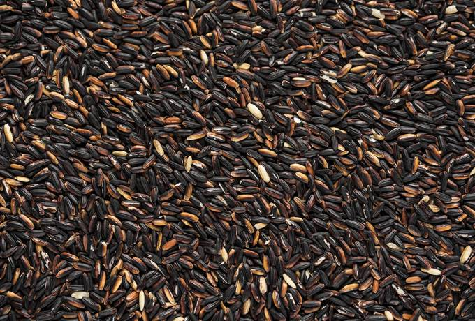 free Raw Black Rice texture