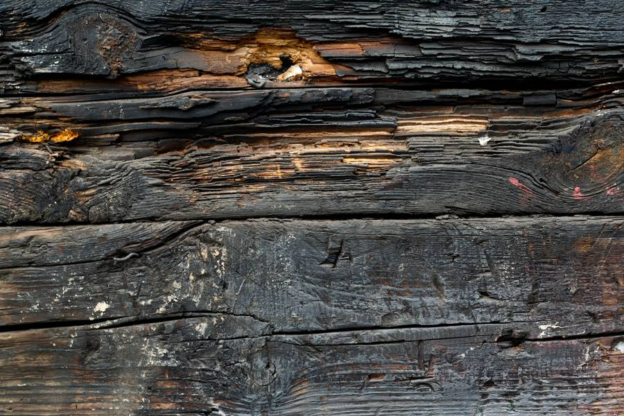 burnt wood plank free texture