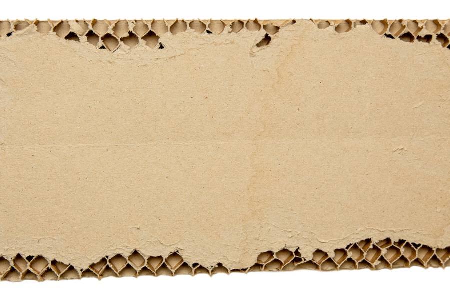Torn Cardboad free texture