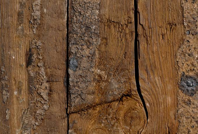 free knot wood grunge texture